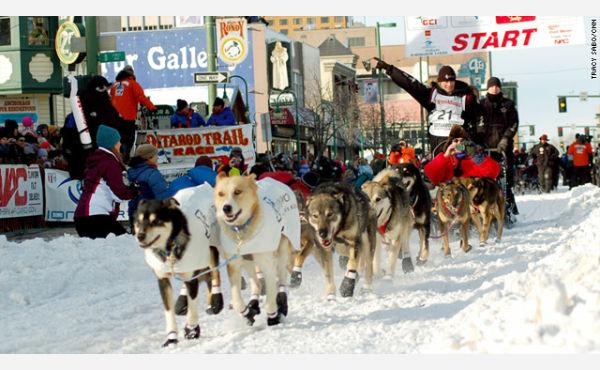 Iarna? Pentru competitia de la Alaska zapada a fost adusa cu trenul
